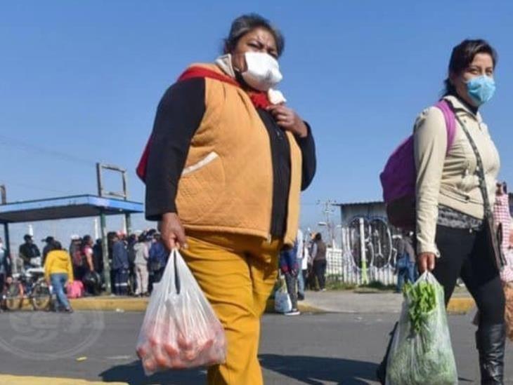 Dejan de laborar 12 millones de personas en México por COVID-19: Inegi