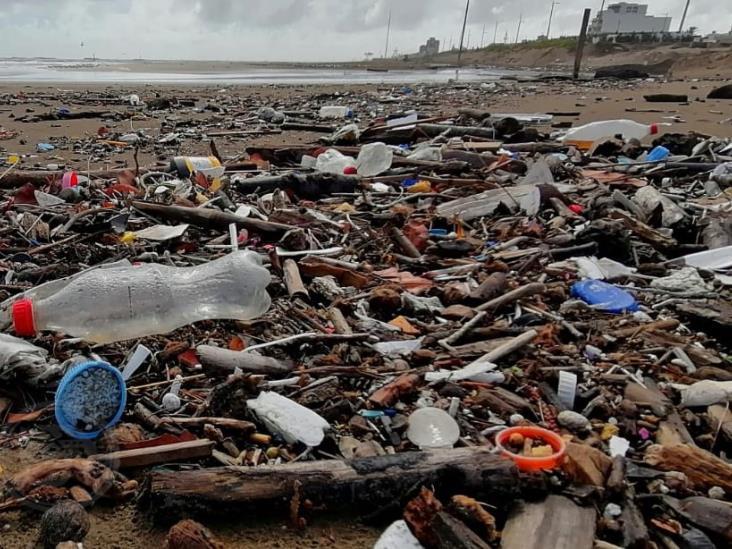 Tras fuertes lluvias, palotada invade playas de Coatzacoalcos