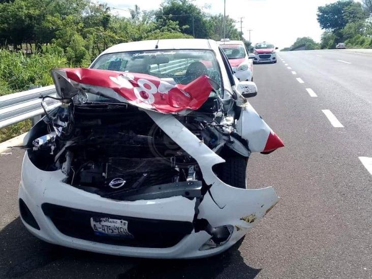Taxista de Coatzacoalcos colisiona contra semoviente en Soconusco