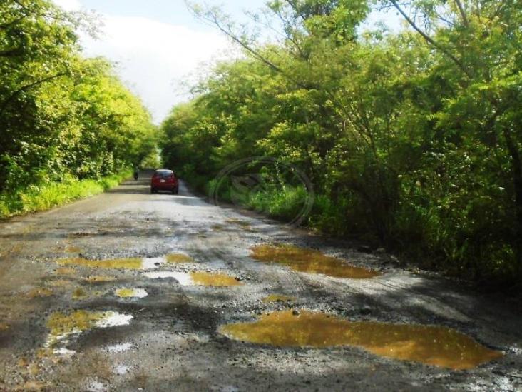 Constantes lluvias destrozar la carretera Huazuntlán- Pajapan