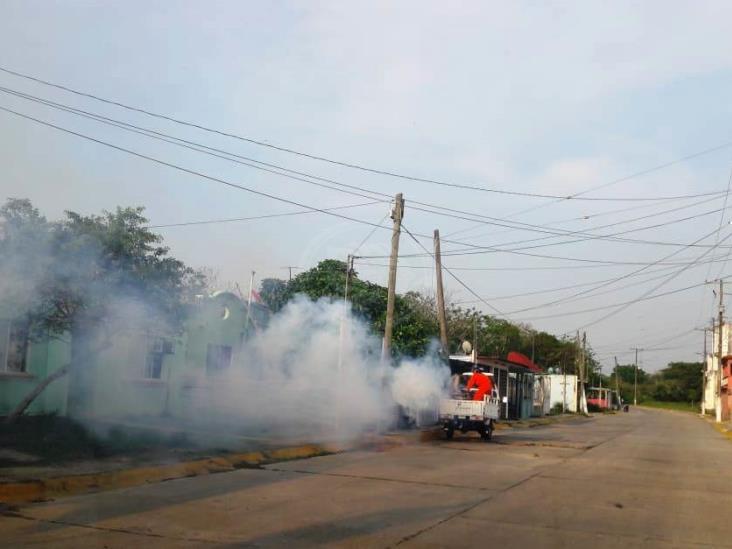 Fumigan para evitar brotes de dengue en Cosoleacaque