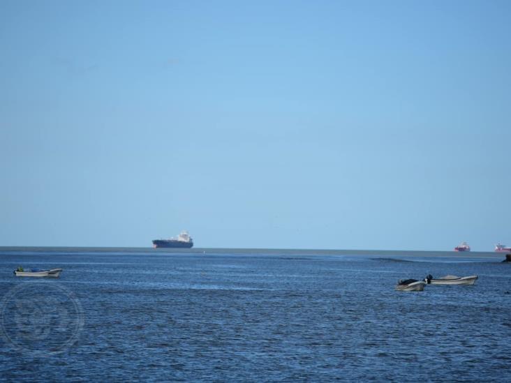Ordenan aislar a tripulación de buque arribado a Terminal de Pajaritos