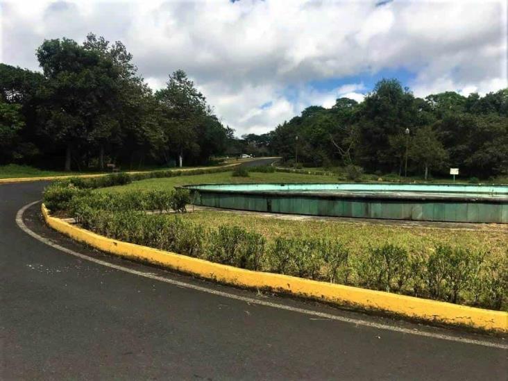 Rastrean en ex asilo de ancianos y Parque Natura ´cementerio clandestino´ en Veracruz