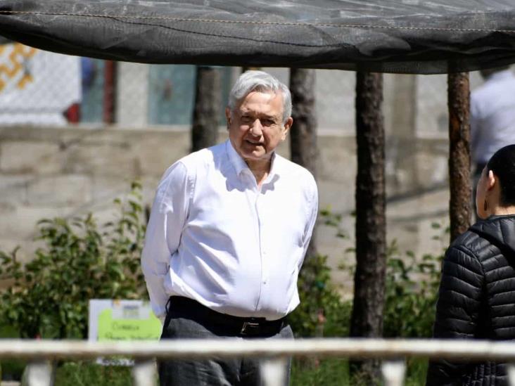 En Veracruz, más de 68 mil empleos gracias a Sembrando Vida: AMLO