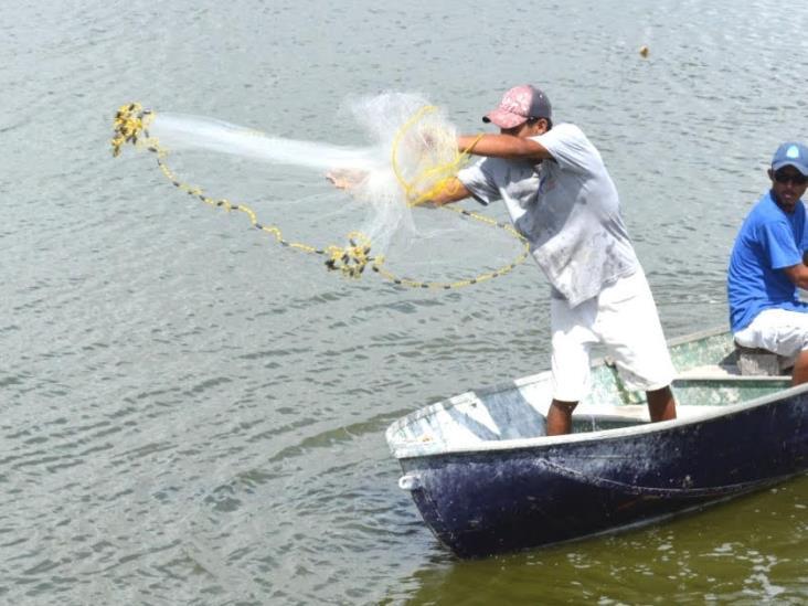 Se paraliza el 92% de embarcaciones pesqueras en Tuxpan
