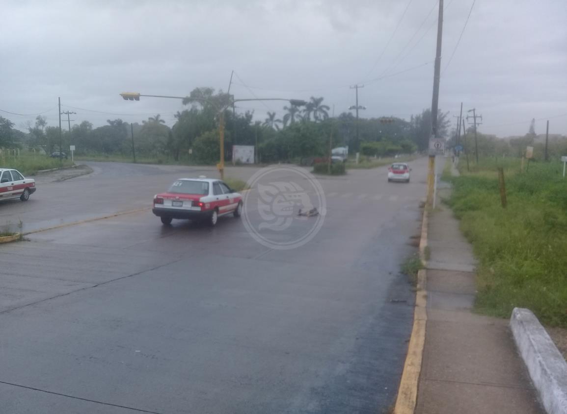 Tercos taxistas de Nanchital siguen sin usar cubrebocas