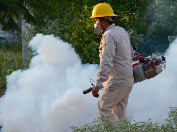 Supera Jalisco a Veracruz como el estado con más casos de dengue