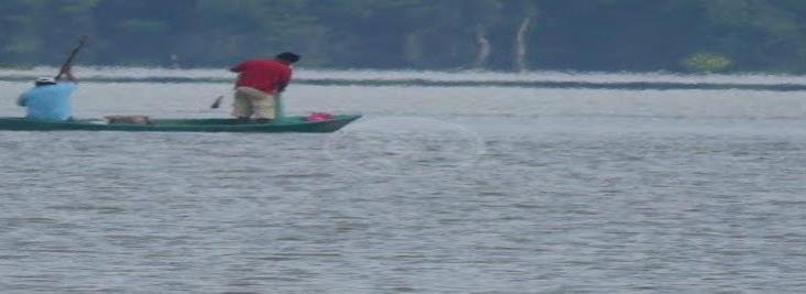Familias de pescadores se alimentan del producto que no logran vender