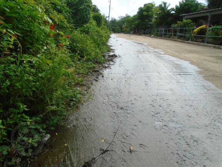Autoridades ignoran el problema de aguas negras en Huazuntlán