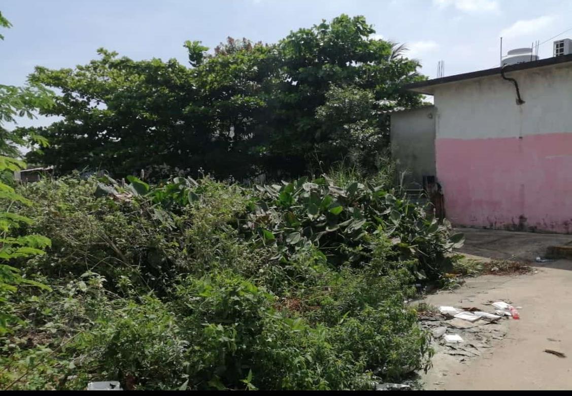En completo abandono canal de aguas negras frente a IMSS