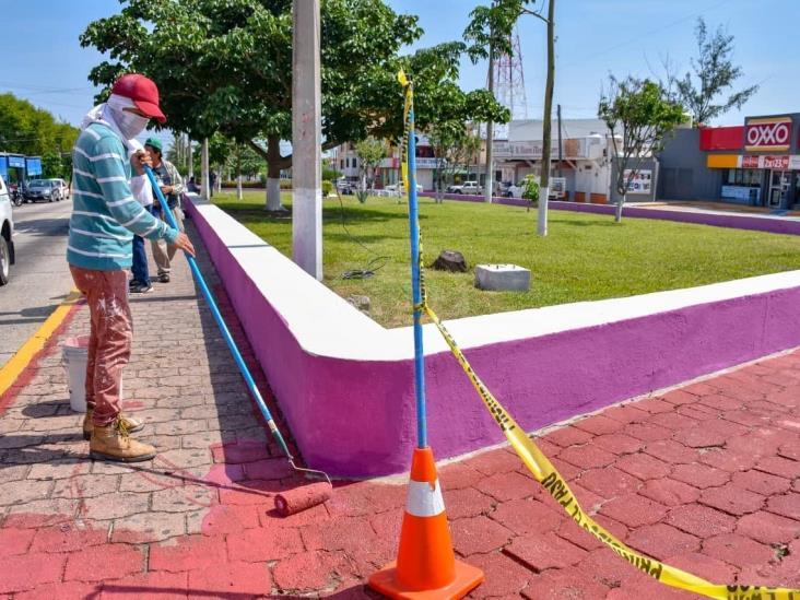 Rehabilita Ayuntamiento camellones y jardineras de Avenida Independencia