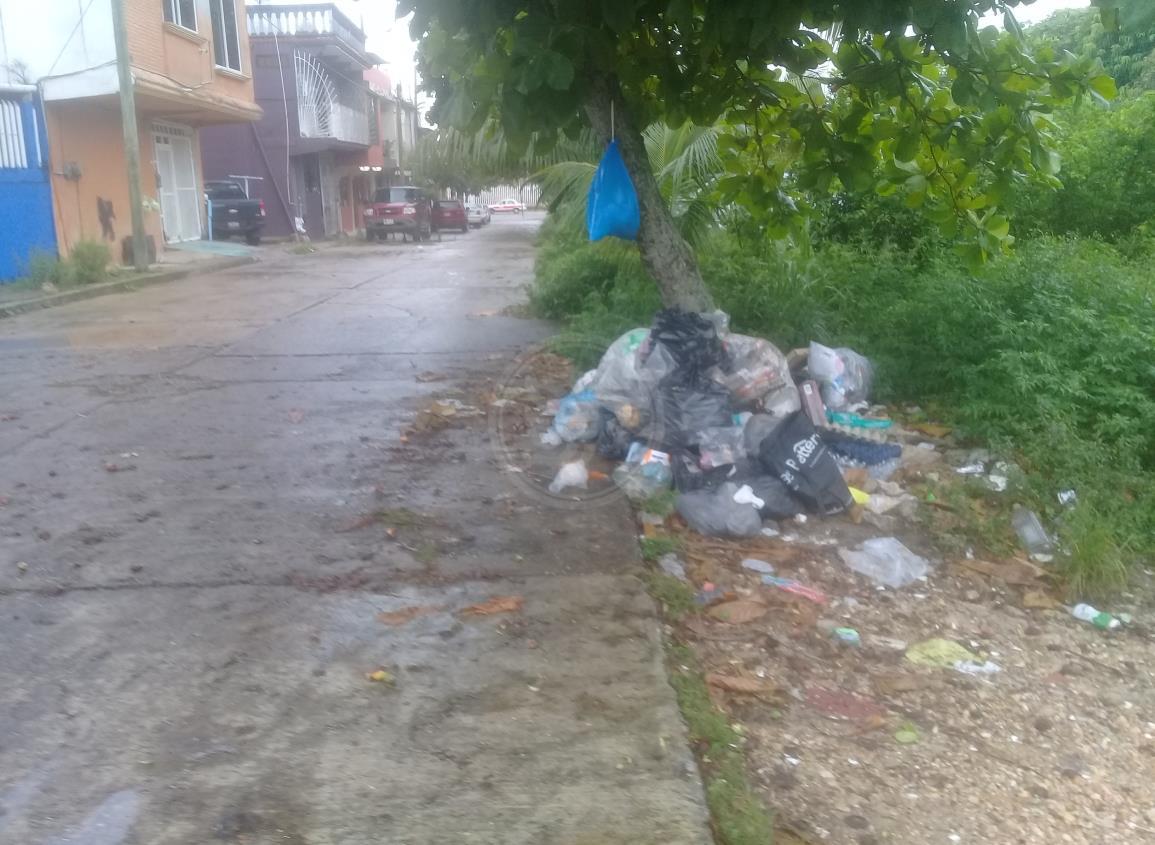 Piden a nanchitecos respetar horario de recolección de basura