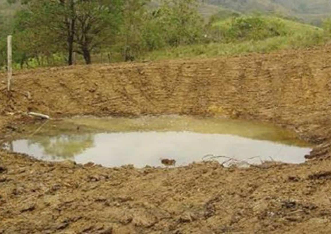 En Moloacán, crean represas para evitar pérdidas a sector ganadero por sequía