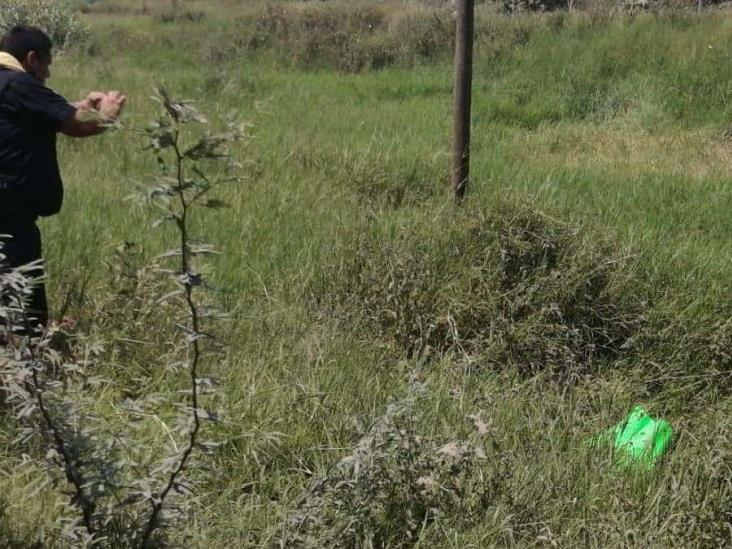 Encuentran cabeza cercenada a un costado de la carretera federal Álamo-Tihuatlán