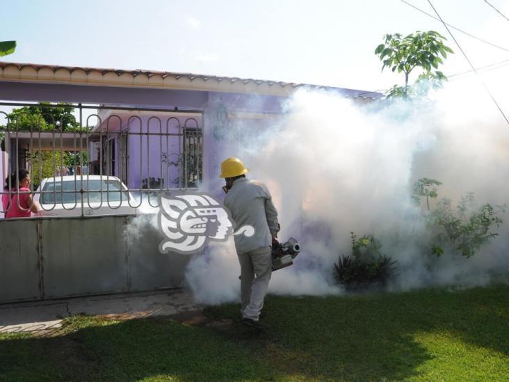 Continuará fumigación contra dengue en Coatzacoalcos