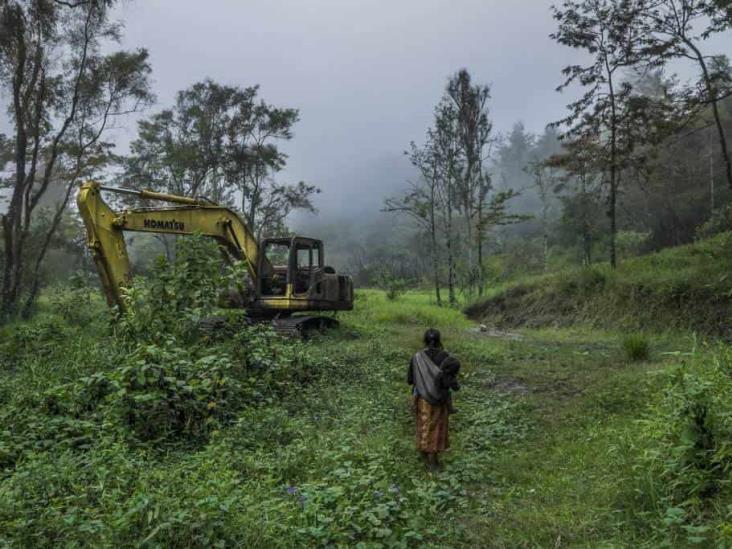 Se debe hacer más para combatir delitos ambientales: GAFI