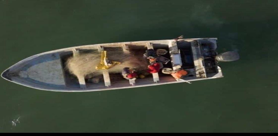 Prohibirán redes de enmalle en hábitat de vaquita marina