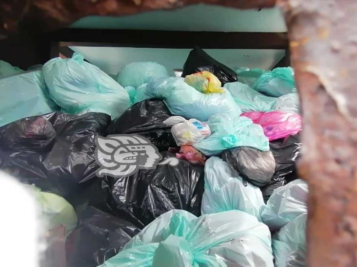 Aplican saneamiento en alrededores del IMSS 36; basura se acumula