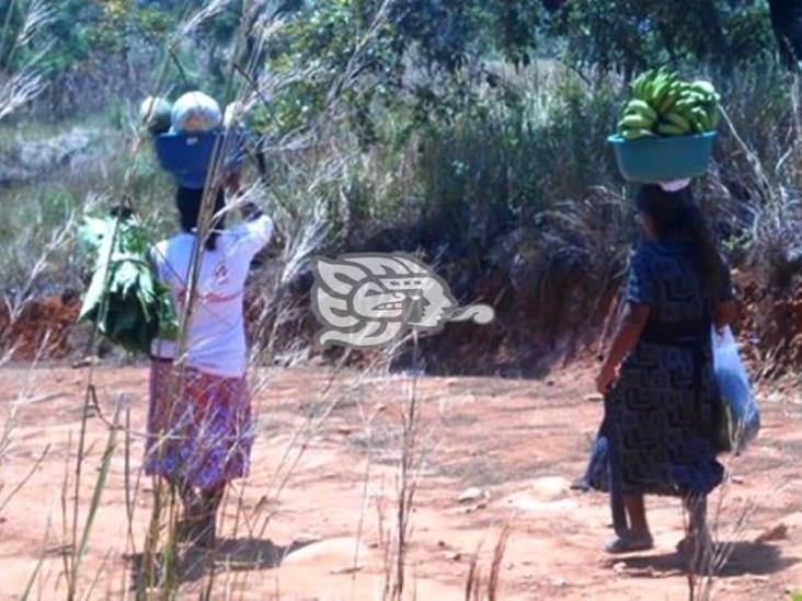 Maltrato hacia mujeres persiste en zonas serranas de Veracruz