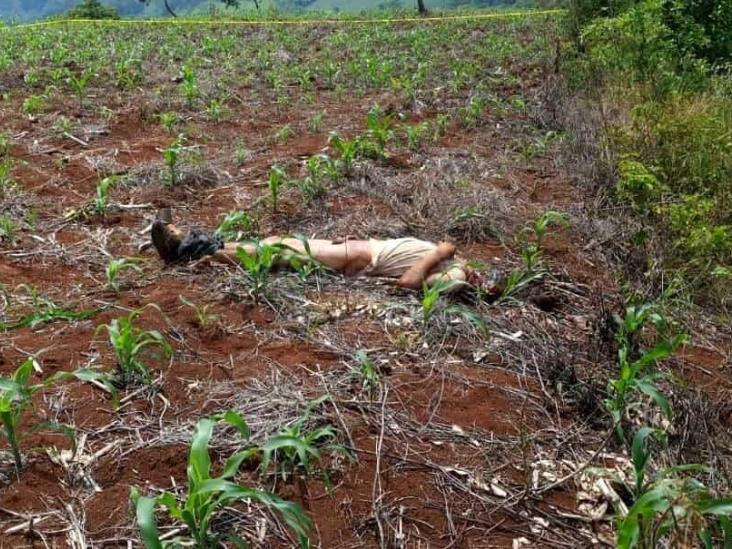 En Soteapan localizan cuerpo de campesino con un disparo y degollado