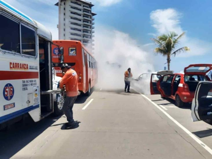 Más de 48 mil unidades de transporte fueron desinfectadas por Seguridad Pública