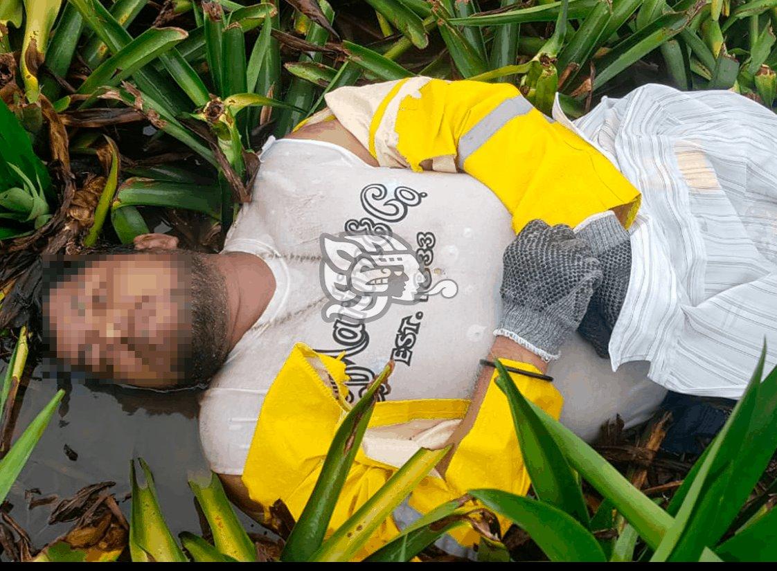 Mueren dos piñeros tras caerles un rayo en Isla