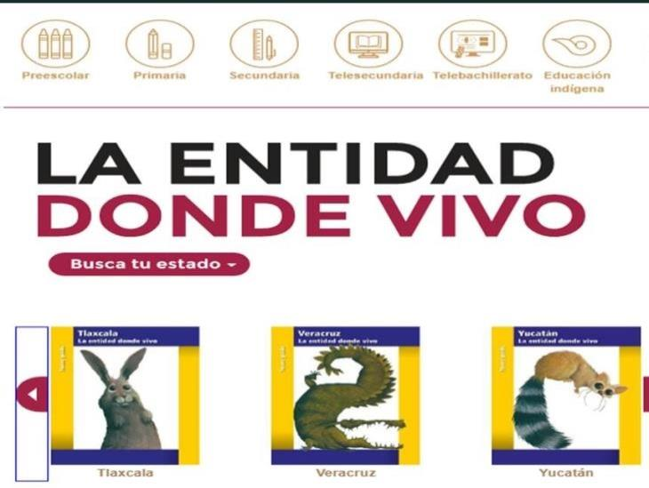Se entregó un 75% de los libros destinados para Coatzacoalcos