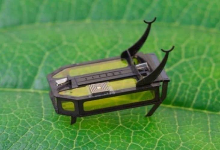 Crean robot del tamaño de un escarabajo y movido por metanol