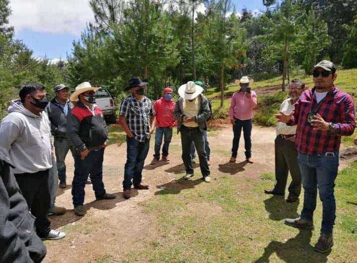 Una realidad, autodefensas en Veracruz, advierten