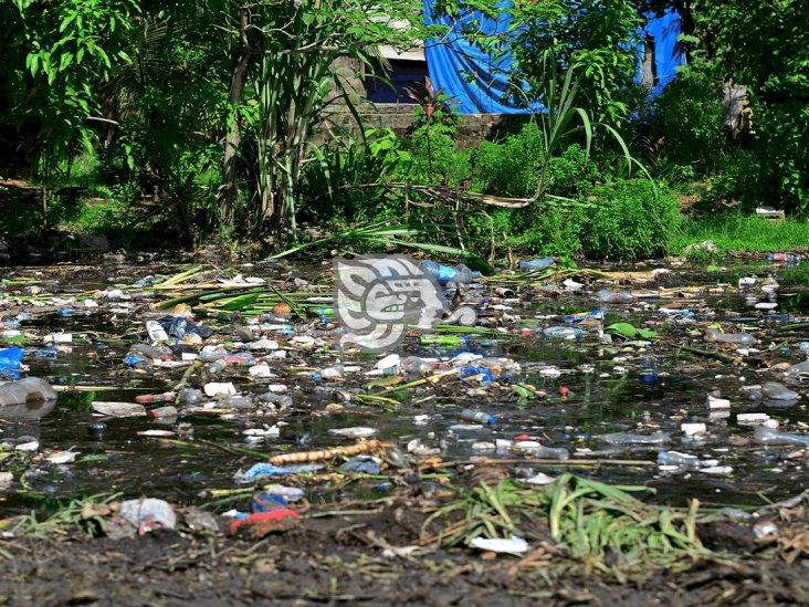 Reforzarán limpieza de canales en Coatza para evitar inundaciones
