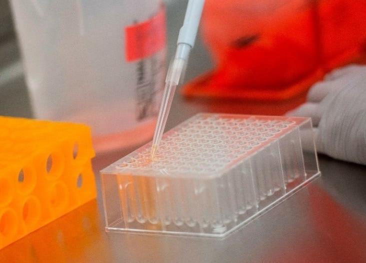 SARS-CoV-2, resultado de una modificación de laboratorio: Estudio