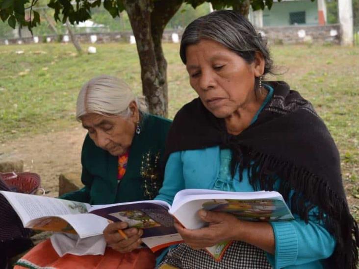Analfabetismo en Veracruz, con rostro femenino: IVEA