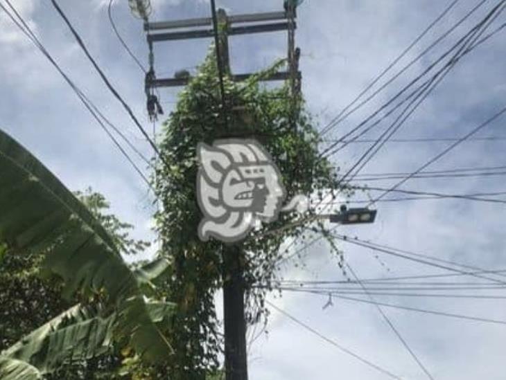 Estalla transformador en Villa Cuichapa, decenas de familias sin luz