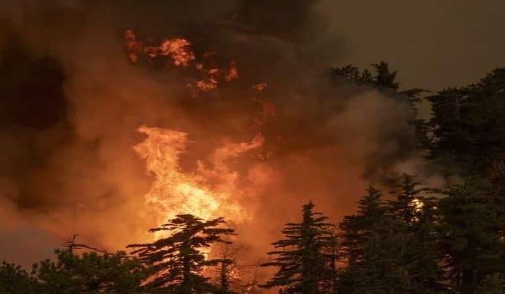 Sube a 16 los muertos por incendios en costa oeste de EU