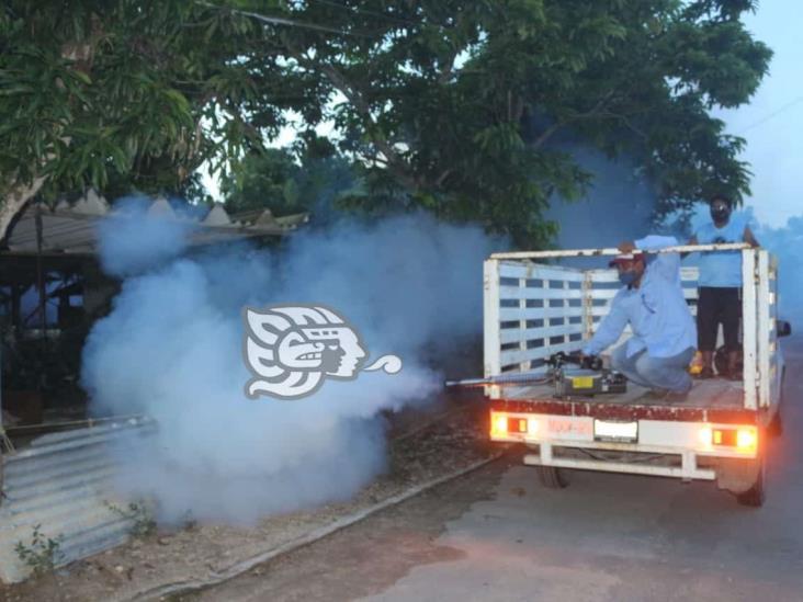 Inician autoridades de salud acciones para combatir el dengue en Moloacán