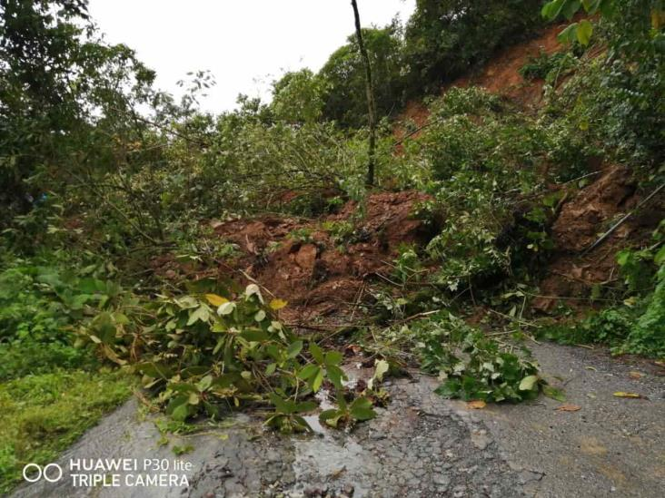 Familias resultan afectadas por deslaves en Mixtla de Altamirano