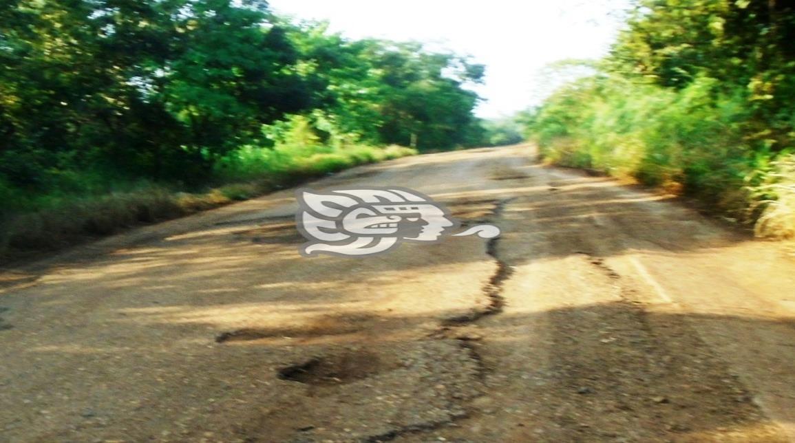 Transportistas de la Sierra de Soteapan anhelan caminos dignos