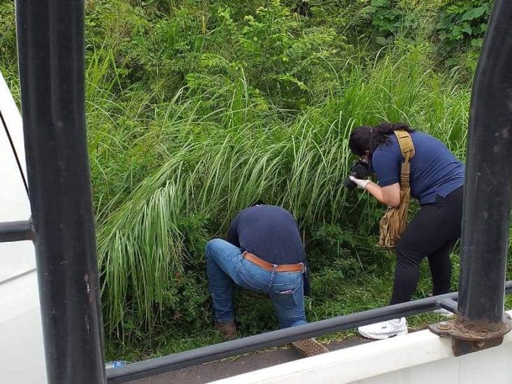 Asesinan a campesino en Medellín