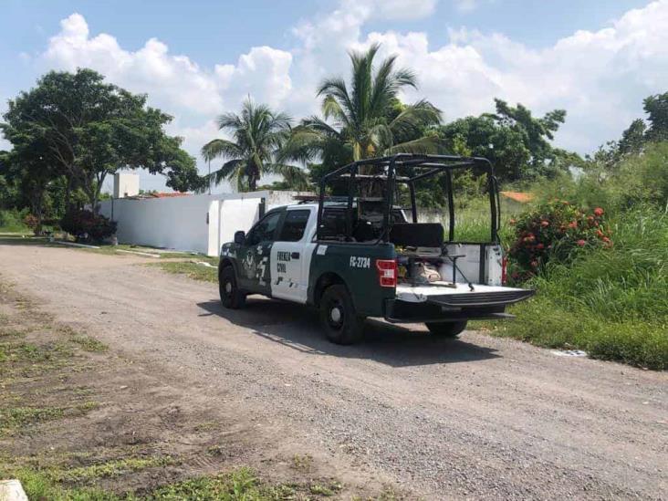 SSP decomisa casi tres toneladas de droga y armas; hay cinco detenidos