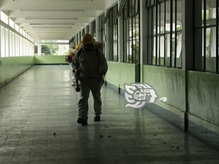 Registra Poza Rica 149 casos de dengue; 1,129 en todo Veracruz