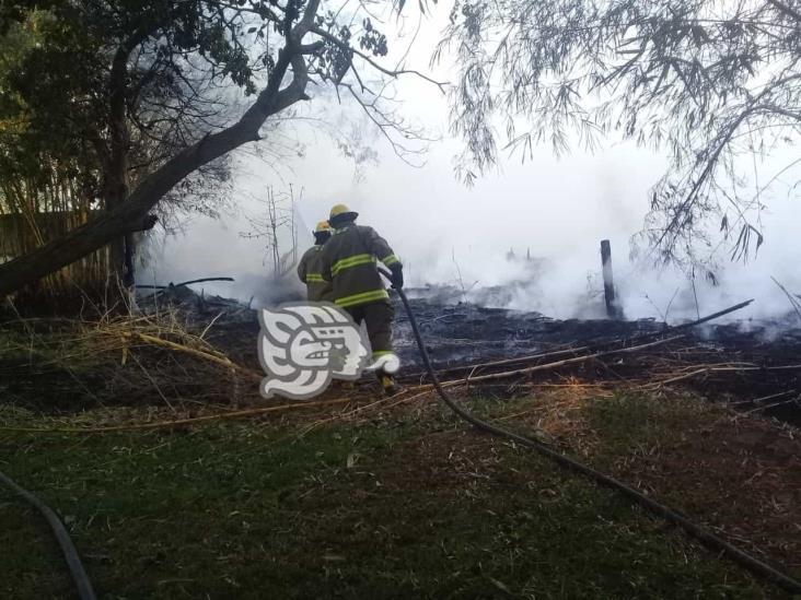Tras 7 horas de trabajo, controlan incendio en zona de ductos de Minatitlán