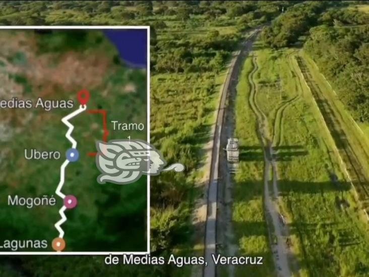 Rescatan flora y fauna en Medias Aguas dentro de obra del Corredor Interoceánico