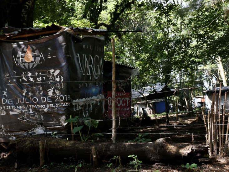 Sí enteraron a AMLO de devastación de bosque en Veracruz; CIOAC se atrinchera