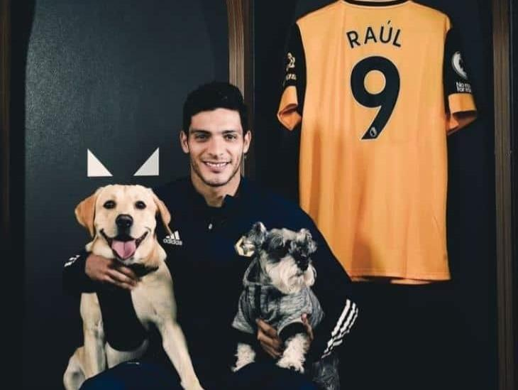 Wolverhampton extendió contrato de Raúl Jiménez hasta el 2024