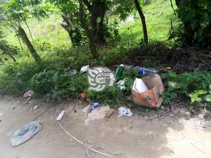 Mal manejo de basura genera serios problemas en Moloacán