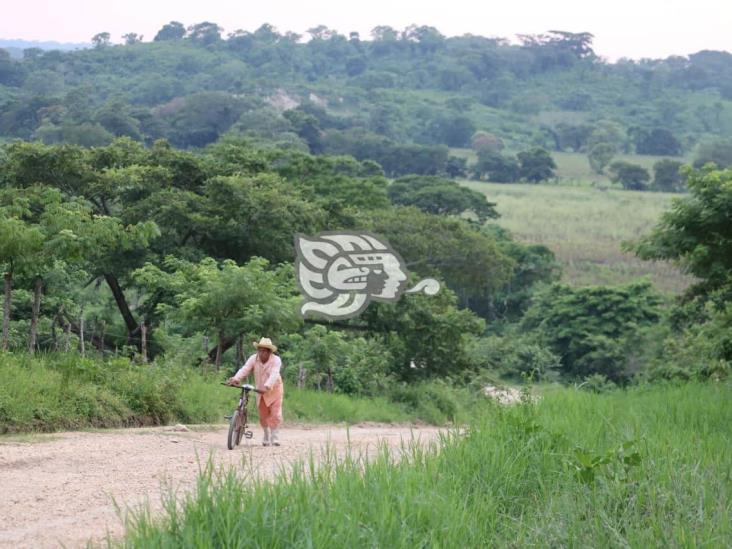 Pánico en Texistepec; Fuerza Civil allana propiedad y dispara al aire