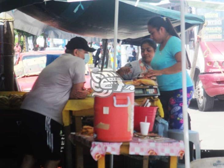 Impulsa Coatzacoalcos microcréditos en los 25 municipios de la Región Olmeca