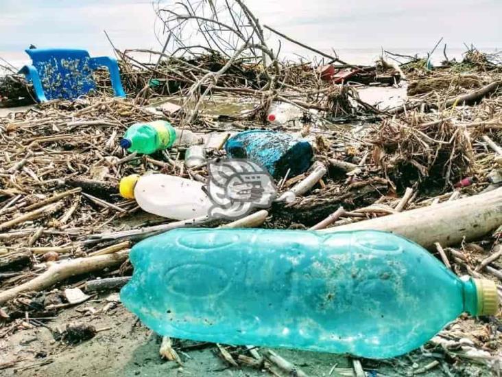 Playa de Cazones, la más contaminada tras lluvias en Veracruz