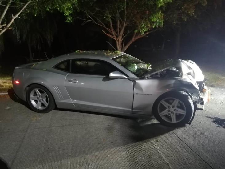 Conductor se estrella contra palmera en Veracruz